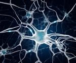 Cell Biology of Neurogenesis