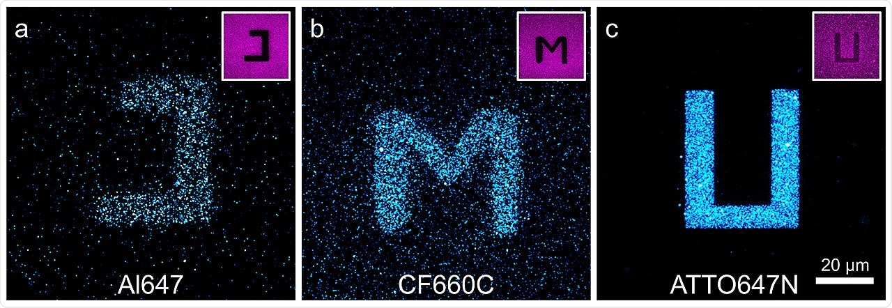 Simple buffers can prevent photoblueing effect in microscopy