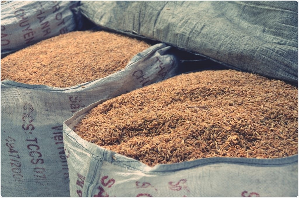 Combined treatment can effectively destroy insects in stored grains