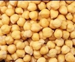 Chickpea genetics reduce need for chemicals