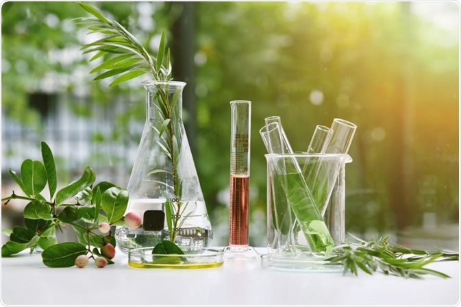 Plant Drug Discovery