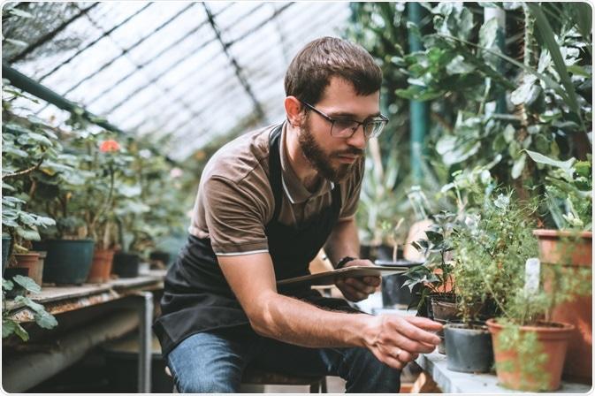 Plant Domestication