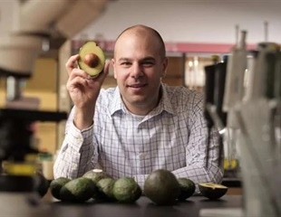Study reveals a compound found in avocados helps in the treatment of leukemia