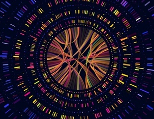 New research aims to take the study of the human genome to the next level