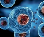 Study shows how stem cells make specific types of cells
