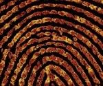 Single fingerprint can help determine whether someone has touched or ingested class A drugs