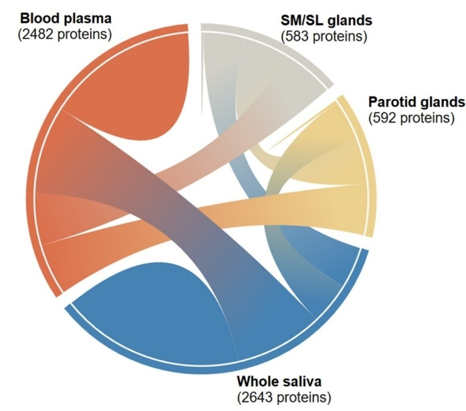 New wiki promotes development of innovative saliva-based diagnostic tests and customized treatment