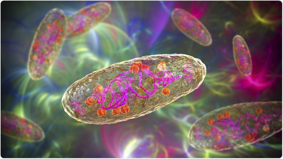 Study shows that Bubonic Plague had a long-term impact on immune gene expression