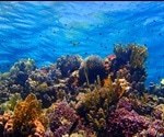 Wellbeing in an Era of Global Change: The Implications of Ocean Acidification on Food Production and How it Links to Human Wellbeing