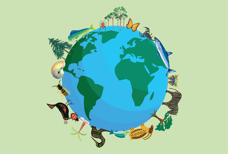 Biodiversity Concept