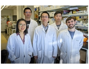 Novel protein could improve treatment outcomes after heart attacks