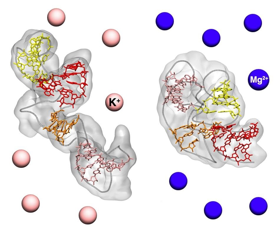 New method reveals high-resolution structure of biomolecules