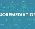 Bioremediation: An Overview