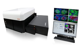 IVIM Technology's IVM-M (IntraVital two-photon microscopy system)