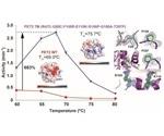 Engineered enzyme facilitates more effective plastic degradation