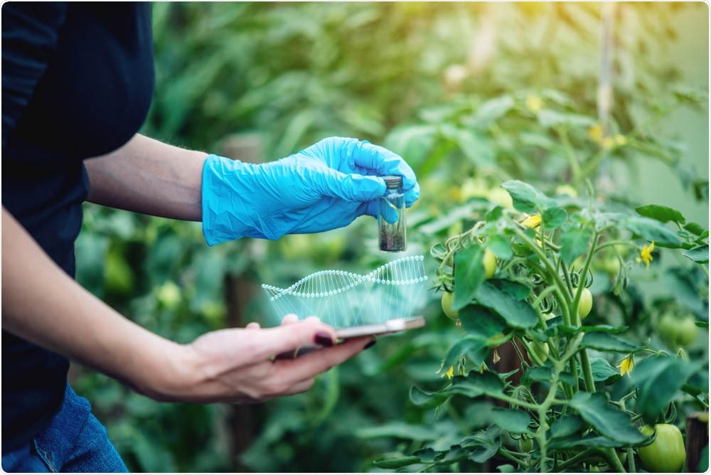Genome Editing in Agriculture