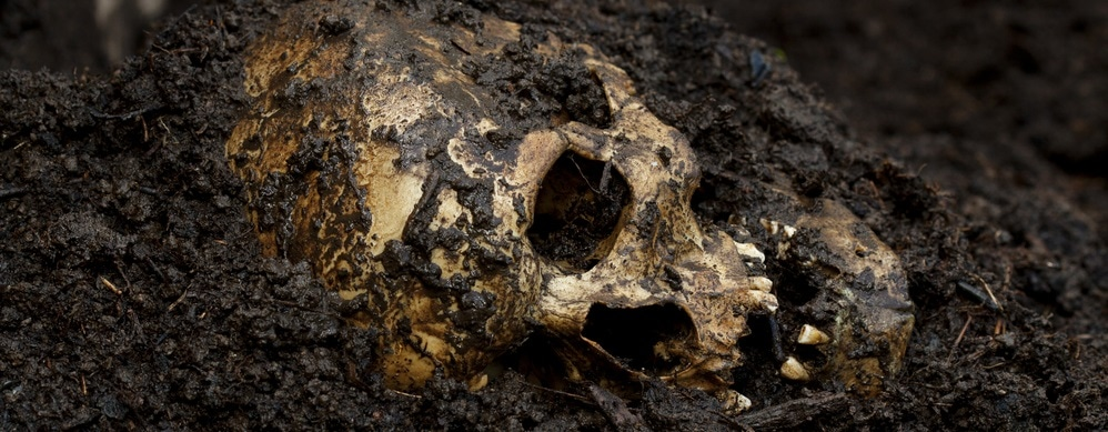 Effects of Soil on the Preservation of Bones