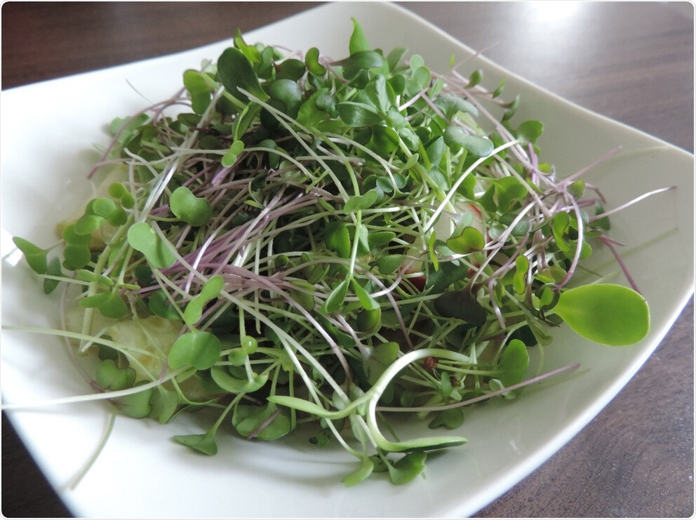 Microgreens can provide global nutrition security, study claims
