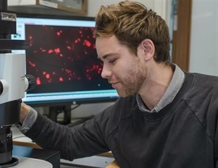 Novel process enables 3D imaging of human organs with micrometer resolution