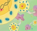 Scientists devise a strategy to enhance anti-tumor immunity