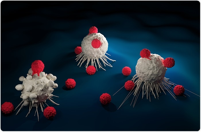 Researchers engineer CAR T cells to enhance their function
