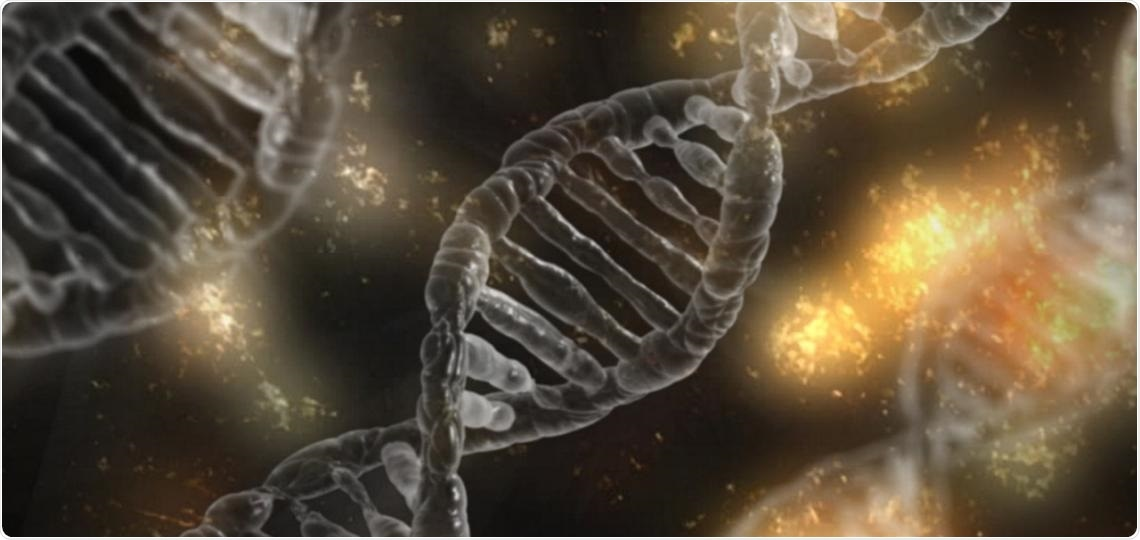 Research discovers how the KLF4 transcription factor influences gene expression