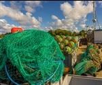 Less Fishing to Fish More – Strategies to Replenish Fishery Stocks