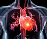 Researchers demonstrate healing power of extracellular vesicles on a heart-on-a-chip