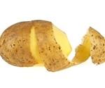 Researchers discover novel resistance gene to devastating potato disease