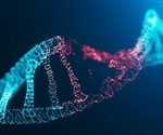 DNA damage may occur far away from the point of incidence of radiation, research shows