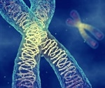 Scientists advance genetic understanding of the tree of life