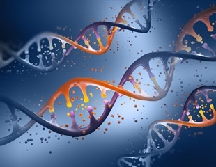 Human genetics: New insights into our own biology