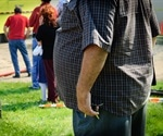 Study shows how a fat cell's immune response exacerbates obesity