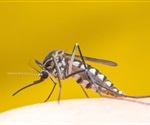 Researchers trace neurons in mosquitoes that sense blood's distinctive flavor