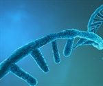What is non-coding RNA (ncRNA)?