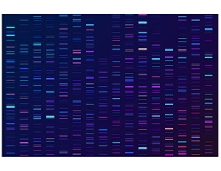 New approach can prevent toxicity linked to neurological gene therapy