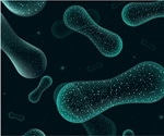 Bacterial microbes in the human gut could help diagnose and treat autism spectrum disorder