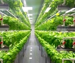 Benefits of Vertical Agriculture and Hydroponics