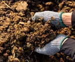 How Does Manure Effect the Growth of Plants?
