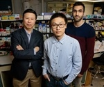 Force can activate genes without intermediates, enzymes, or signaling molecules