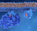 Mutant Splicing Factors as Oncogenes