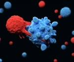 Experience Matters For Immune Cells