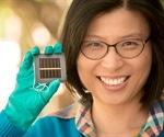 Next-Generation solar cells pass strict international tests