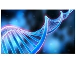 Single-cell sequencing can reveal genetic diversity of cancer cells