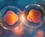 C19ORF57 gene could advance reproductive medicine