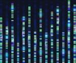 New model decodes relationship between metabolic mechanisms and genes