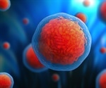 How could Stem Cells be Used in Drug Discovery?