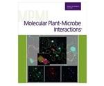 Novel method to enhance biological nitrogen fixation in modern soybean cultivars