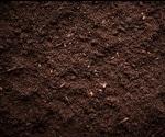 Blind spots of soil biodiversity