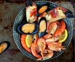 Migrations Stop Shellfish From Escaping Ocean Warming